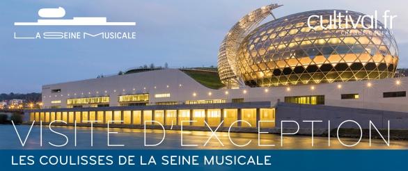 Plongée au coeur de la Seine Musicale