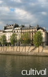 Secrets of the Ile Saint Louis : Tours of Parisian districts